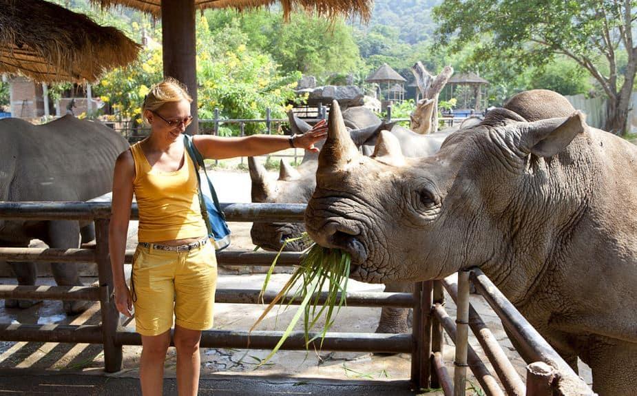 Thảo cầm viên – Công viên thủy sinh Chiang Mai (Ảnh ST)