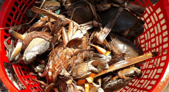 Hải sản biển Thạnh Phú tươi ngon