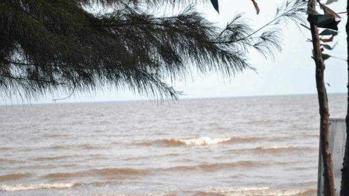 Biển Thạnh Phú mang một vẻ đẹp hoang sơ tiềm ẩn