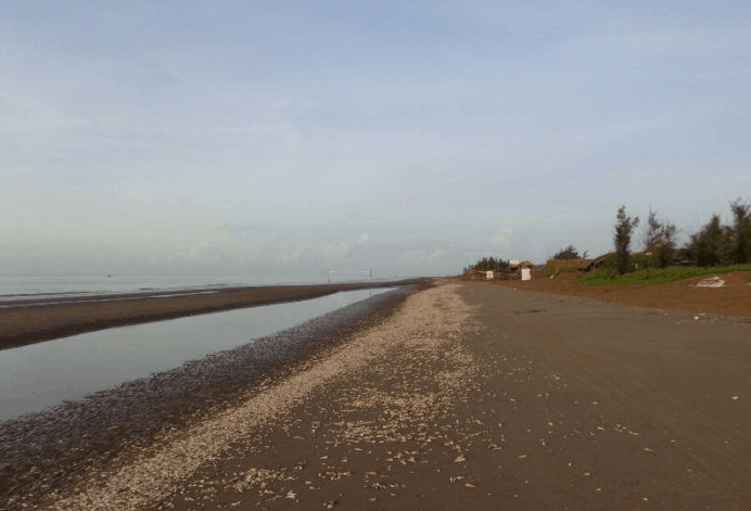 Con đường ốc viết tại biển Thạnh Phú