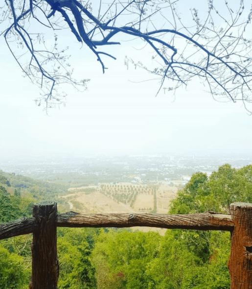 Linh Sơn Bửu Thiền Tự 2