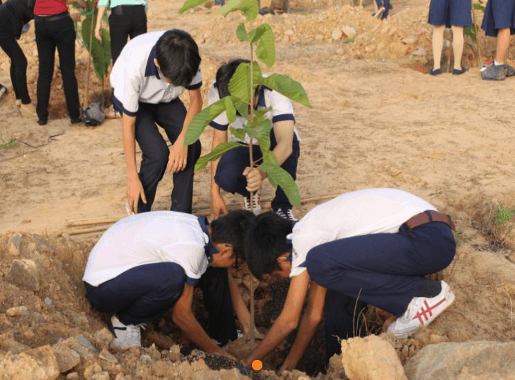 Hoạt động trồng cây tạo nên niềm yêu thiên nhiên
