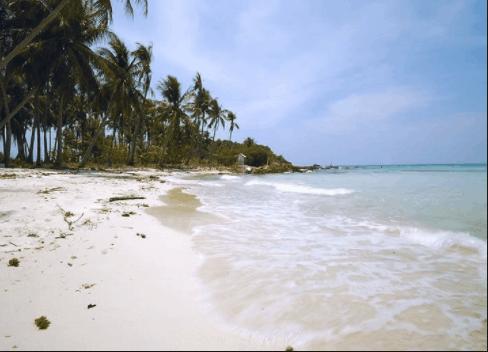 Hàng dừa ôm trọn bãi biển ở hòn Mấu