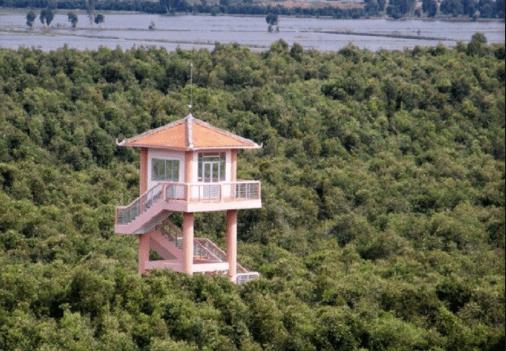 Ngọn tháp canh nằm giữa rừng tràm