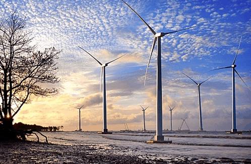 Cánh đồng quạt gió ở Bạc Liêu