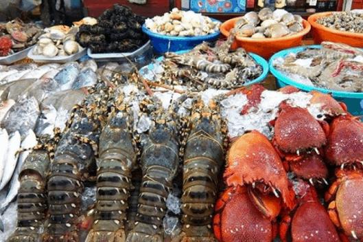 Côn Đảo có thế mạnh về hải sản