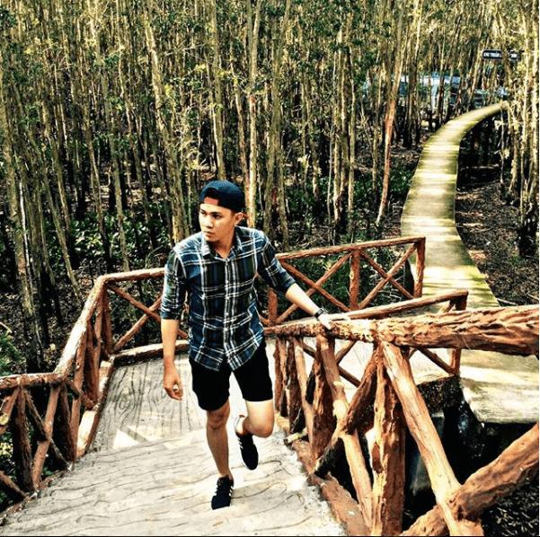 Những cây cầu gỗ ở rừng tràm