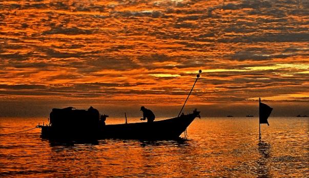 Bình yên trên đầm Đông Hồ
