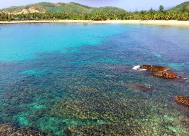 Coral reefs right near the shore with many vibrant colors (Photo ST)