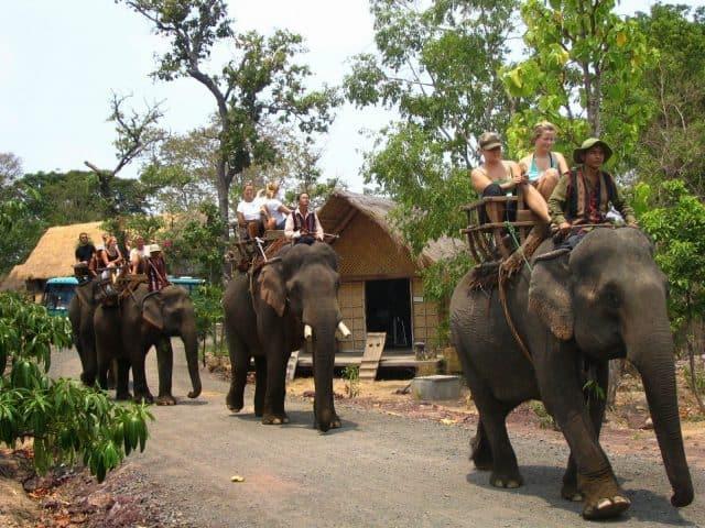 Các hoạt động thú vị như cưỡi voi dành cho du khách (ẢNH ST)