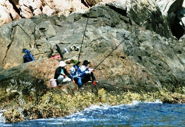 Câu cá trên đảo là một trong những hoạt động khá thú vị (Ảnh ST)