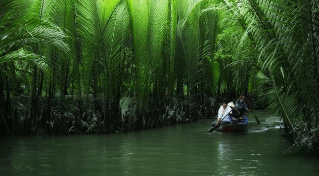 Du lịch Cồn Tiên