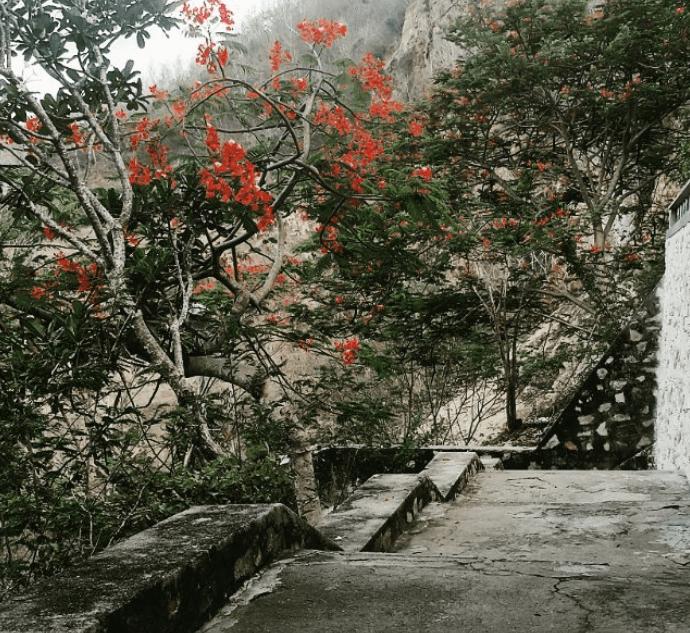 Khung cảnh đường lên chùa Quan Âm Các