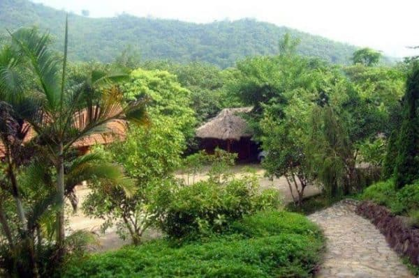 Khu du lịch sinh thái Cọ Xanh