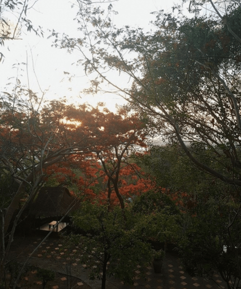 Một buổi chiều yên bình tại chùa Quan Âm Các