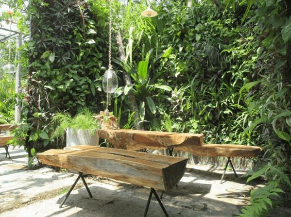 Một góc nhỏ tại quán cafe vườn ươm