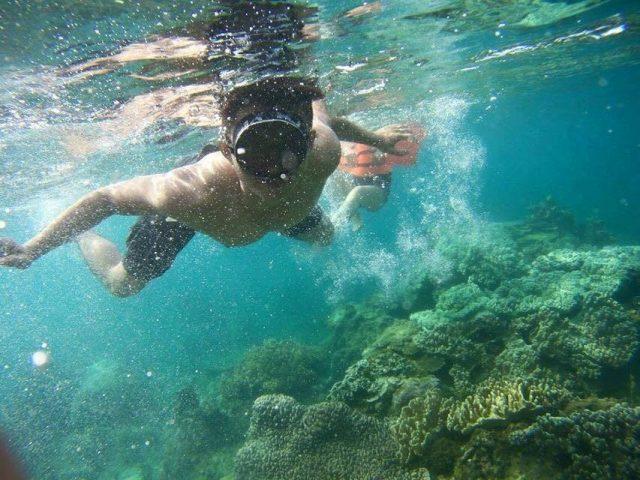 Lặn ngắm san hô chỉ với chiếc kính bơi đơ giản (Ảnh ST)