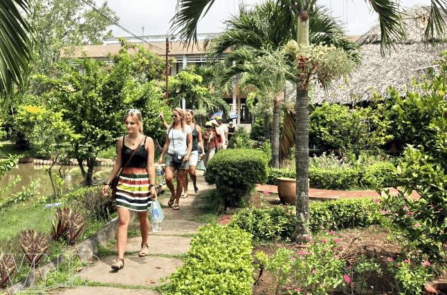 Hình ảnh các du khách tới tham quan vườn trái cây Cái Mơn