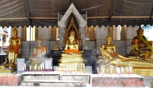 Ngoài tượng Phật vàng thờ trong chánh điện, ở chùa Phật vàng còn thờ rất nhiều tượng Phật với nhiều tư thế khác nhau (Ảnh ST)