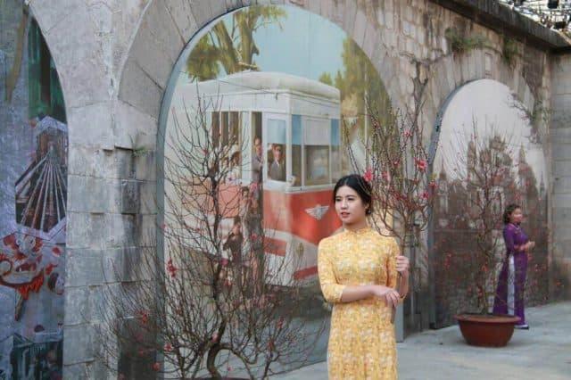 Pho bich hoa Phung Hung