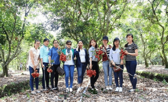 Lập team phượt vườn trái cây Cái Mơn