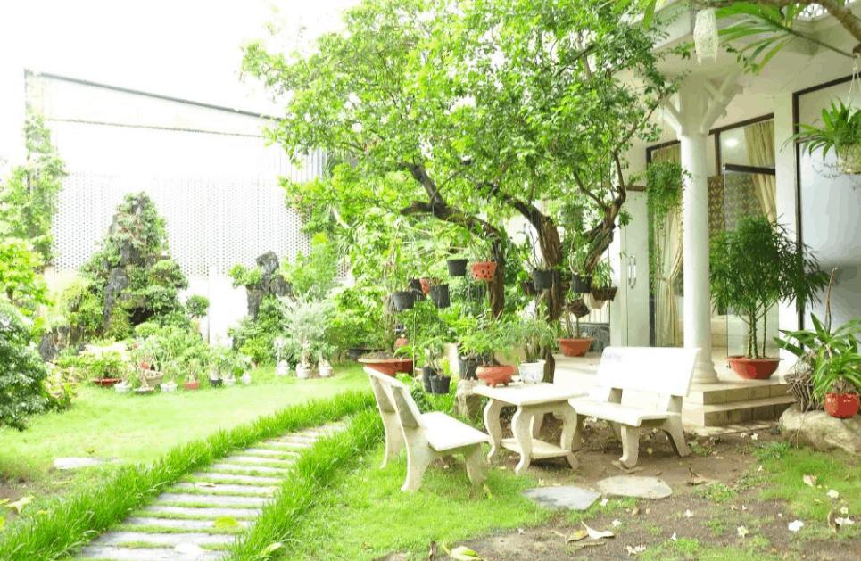 Sân vườn khách sạn Mekong & Restaurant