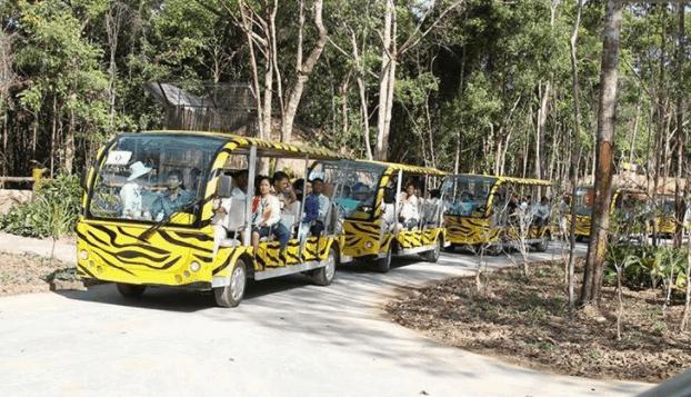Tham quan vườn thú Vinpearl Safari bằng xe con
