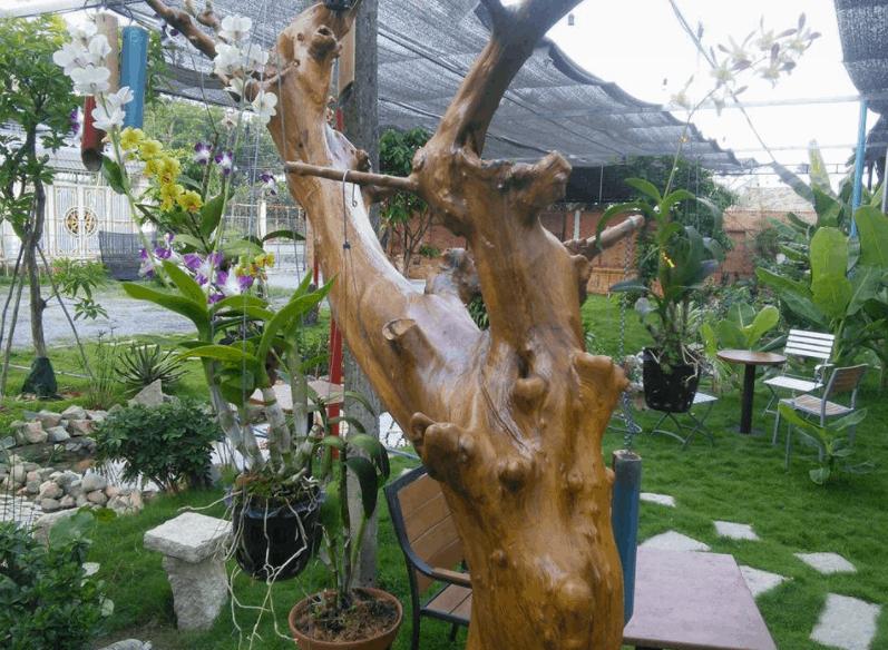 Trải nghiệm không gian trong xanh tại MM Garden Cafe