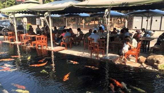 Trải nghiệm quán Koi Cafe Bình Dương