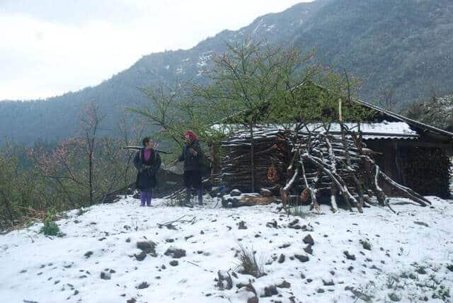 Hình ảnh tuyết rơi trên đèo Ô Quy Hồ