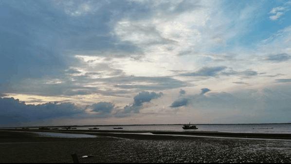 Vi vu biển Bình Đại