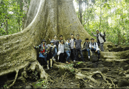 Vườn quốc gia Nam Cát Tiên 4