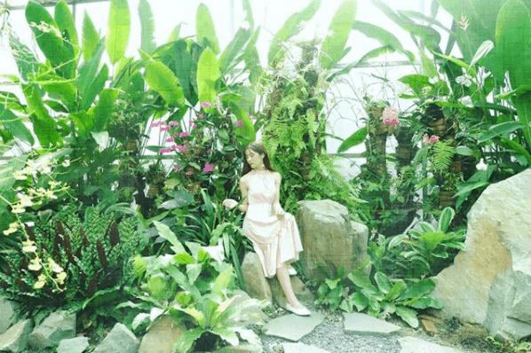 Tận hưởng kỳ nghỉ trong ngày tại KDL Bửu Long