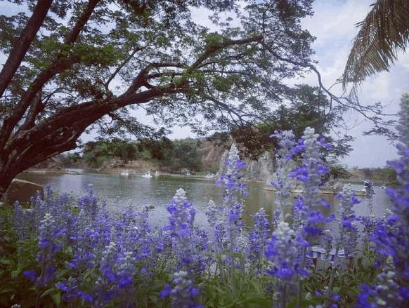 Đà Lạt thu nhỏ ở gần Sài Gòn