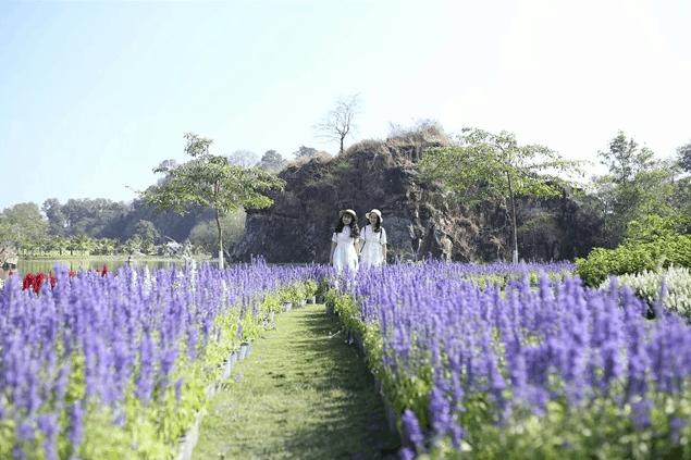 Dạo bước vườn hoa xinh đẹp ở KDL Bửu Long