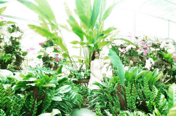 Tại khu du lịch Bửu Long có nhiều loài hoa đẹp