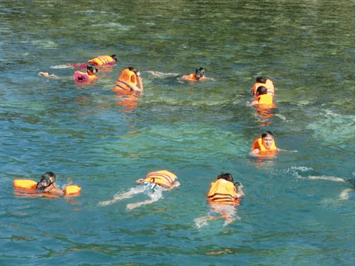 Bơi lội thỏa thích ở Nam Du