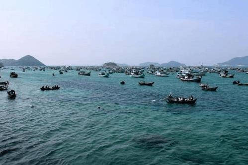 Những tàu cá lênh đênh trên biển