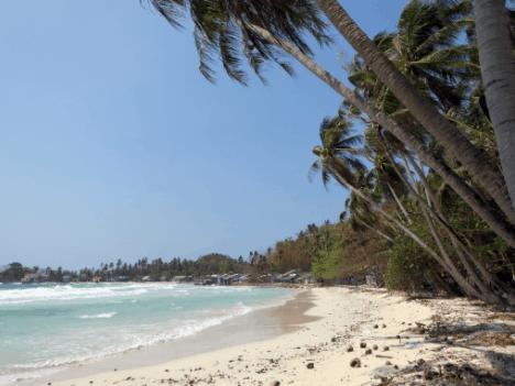 Khung cảnh nơi đây rất đẹp, được bao bọc xung quanh là những hàng dừa lâu năm xanh mát.
