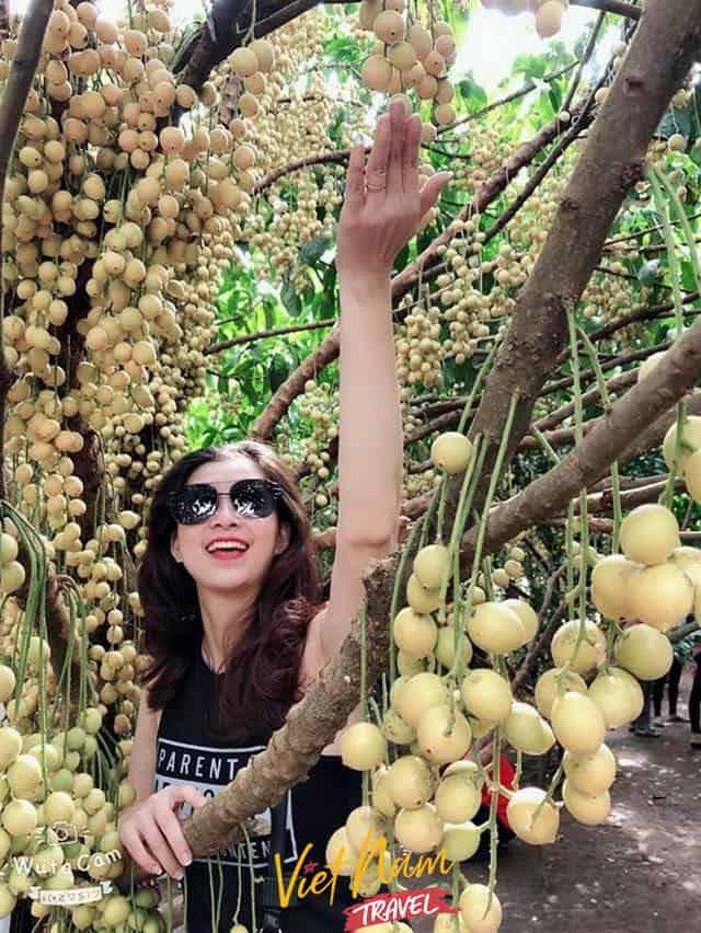 vườn trái cây Út Tiêu Long Khánh