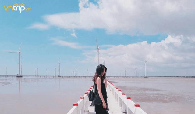 cánh đồng gió bạc liêu