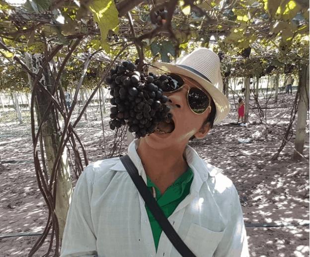 vườn nho rừng tây ninh