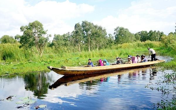 Đi thuyền dạo quanh rừng U Minh Hạ