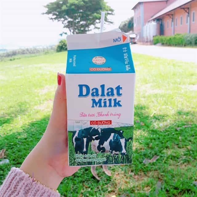 Những sản phẩm sữa của nông trại (Ảnh ST)