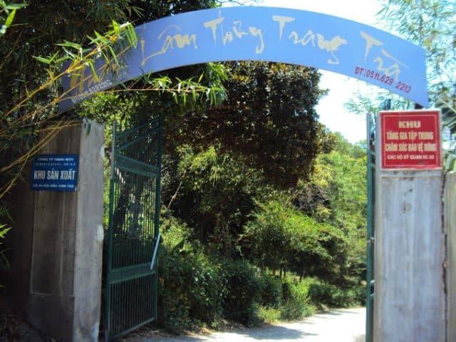 Cổng vào Nhất Lâm Thủy Trang Trà ( Ảnh: ST)