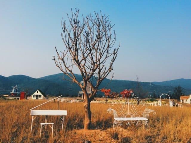 Có một Thuận Phước Field rất Châu Âu ngay tại Đà Nẵng. (Ảnh: ST)