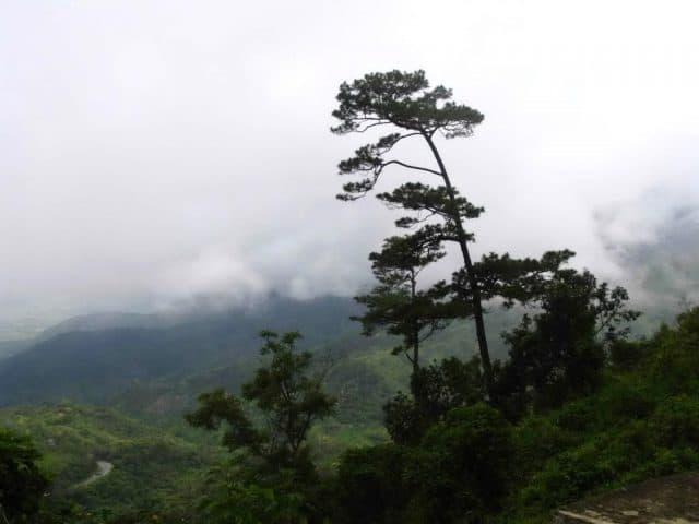 Đoạn đường khi mới lên đèo có khá nhiều mây mù (Ảnh ST)