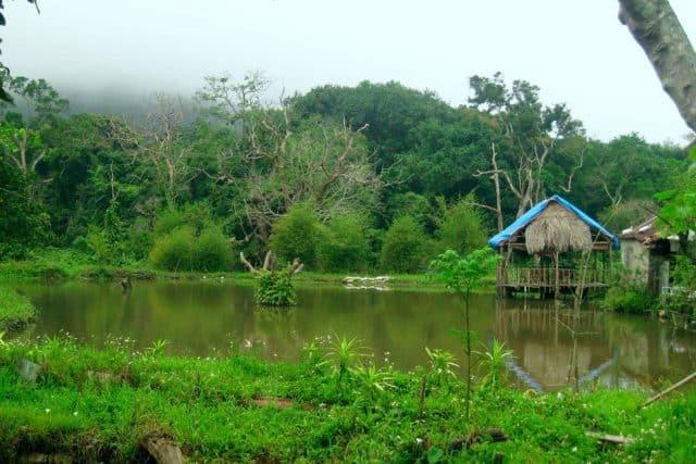 Nhà chòi dành cho du khách du lịch Đà Nẵng ( Ảnh: ST)
