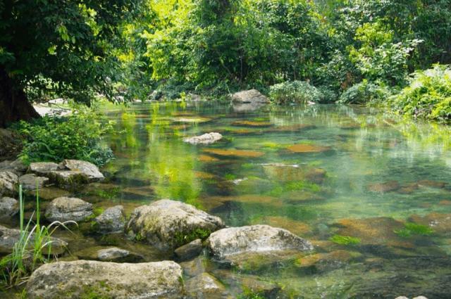 Kinh nghiệm du lịch Vườn quốc gia Xuân Sơn