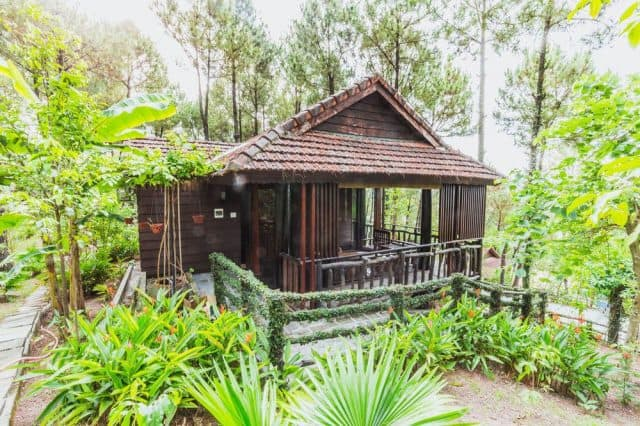 Khu nghỉ dưỡng thiên nhiên ở Huế (Ảnh: ST)
